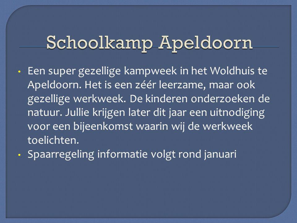 Een super gezellige kampweek in het Woldhuis te Apeldoorn. Het is een zéér leerzame, maar ook gezellige werkweek. De kinderen onderzoeken de natuur. J