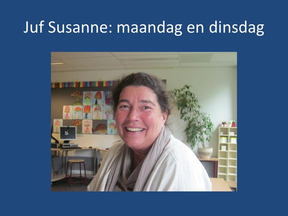 Ook wordt spelling geoefend op de computer. Thuis ook mogelijk via www.bloon.nl