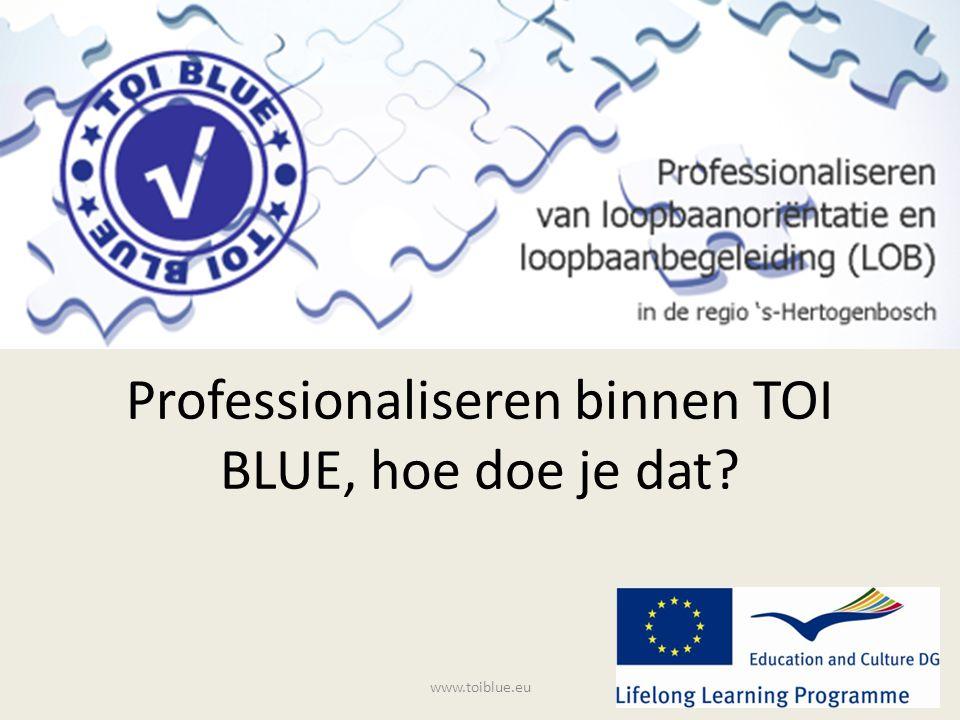 Professionaliseren binnen TOI BLUE, hoe doe je dat? www.toiblue.eu
