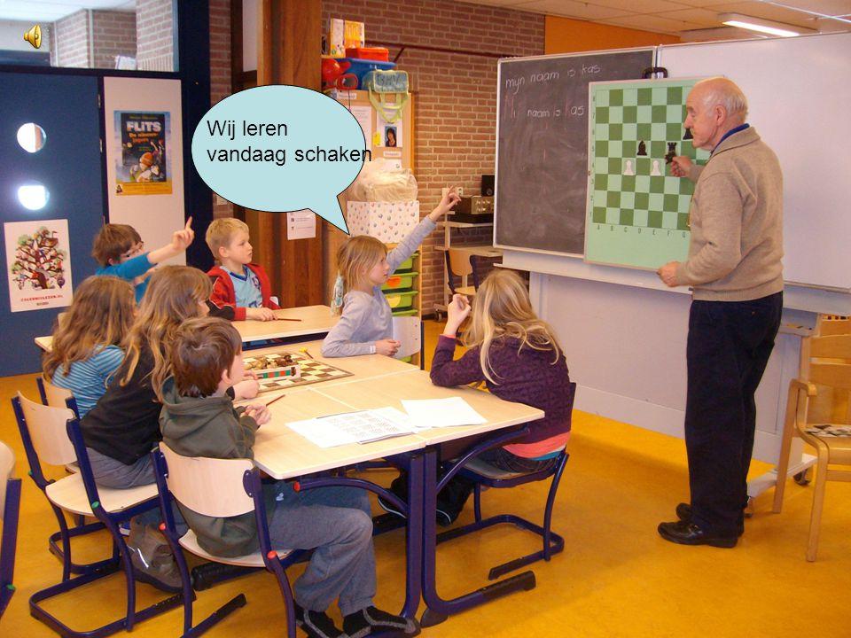 Groep 6 gaat schaken Door groep 6 van de dubbele punt in Aartswoud