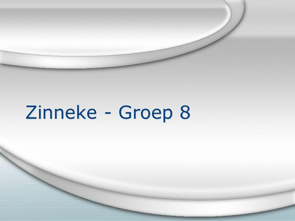 Zinneke - Groep 8