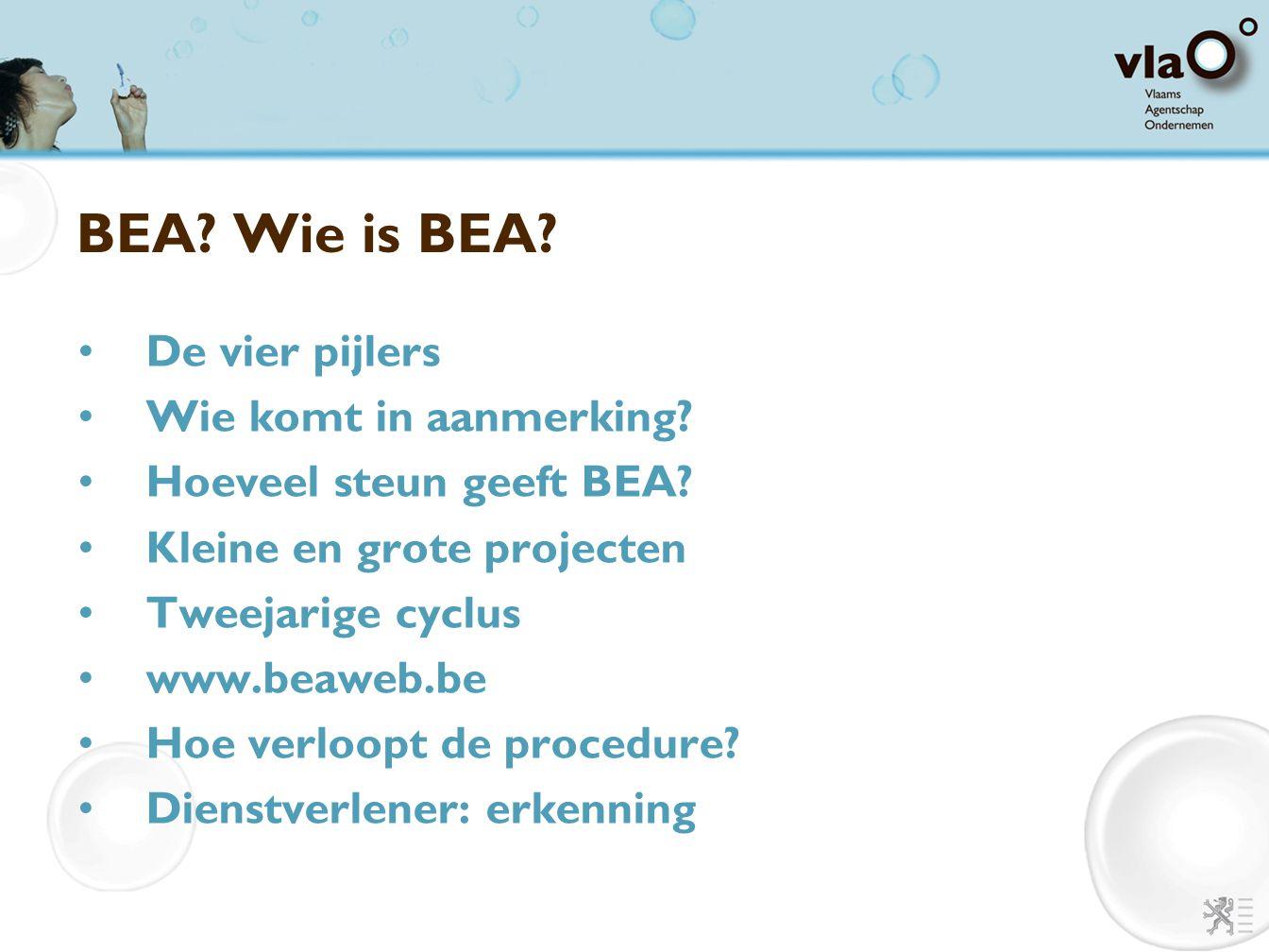 BEA? Wie is BEA? De vier pijlers Wie komt in aanmerking? Hoeveel steun geeft BEA? Kleine en grote projecten Tweejarige cyclus www.beaweb.be Hoe verloo
