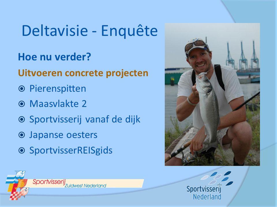 Hoe nu verder? Uitvoeren concrete projecten  Pierenspitten  Maasvlakte 2  Sportvisserij vanaf de dijk  Japanse oesters  SportvisserREISgids Delta