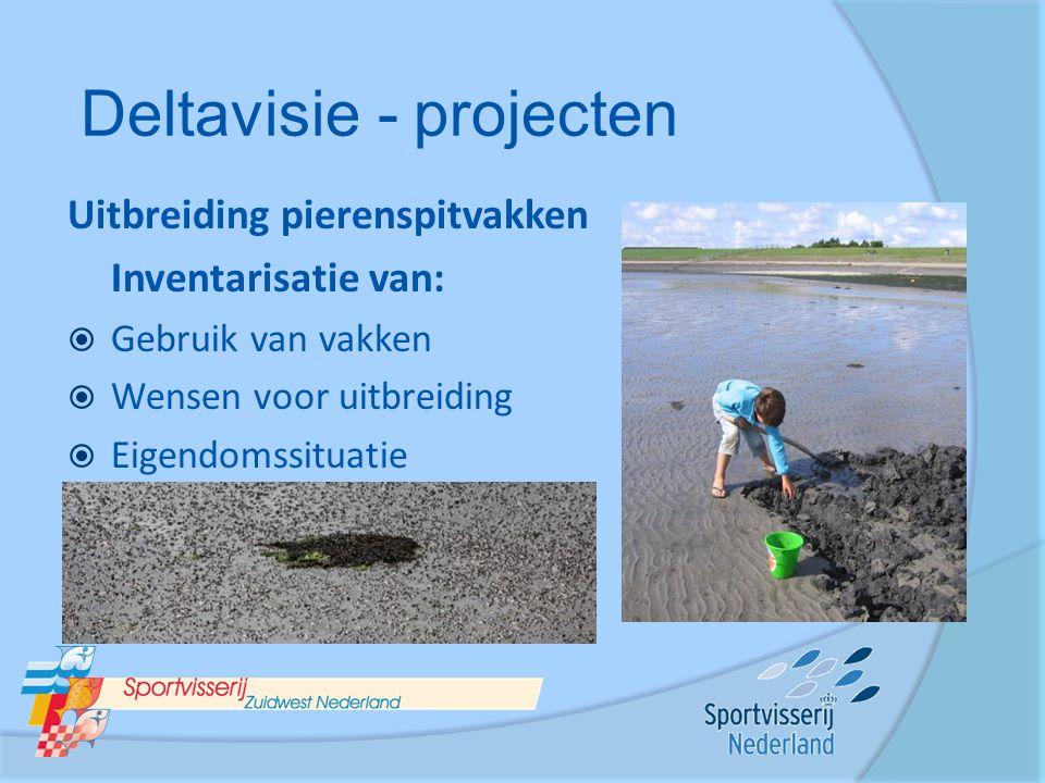 Uitbreiding pierenspitvakken Inventarisatie van:  Gebruik van vakken  Wensen voor uitbreiding  Eigendomssituatie Deltavisie - projecten