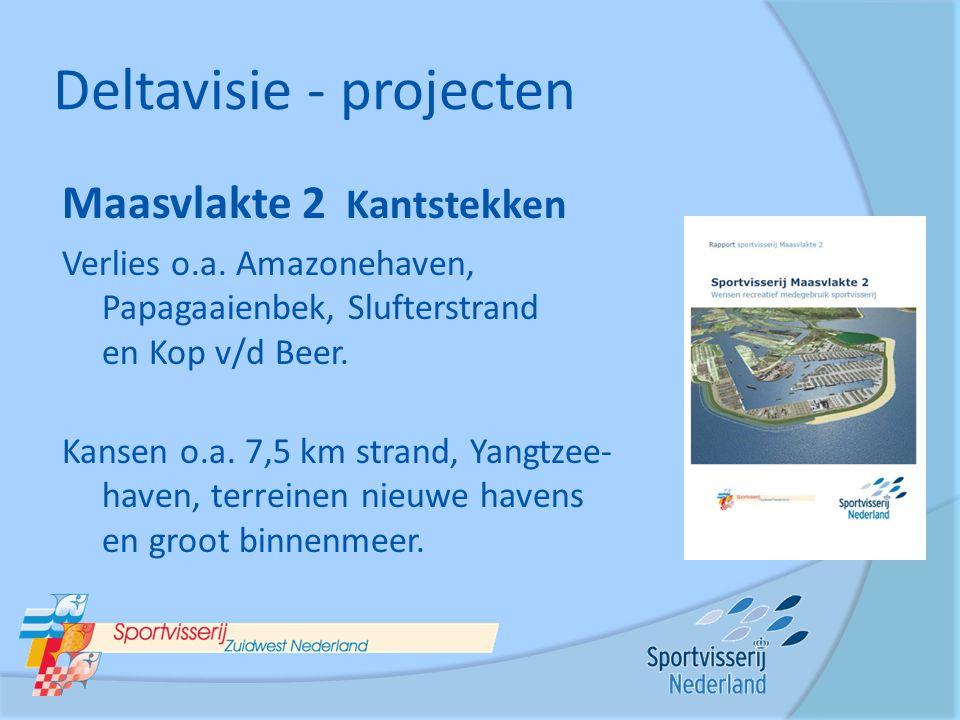 Deltavisie - projecten Maasvlakte 2 Kantstekken Verlies o.a. Amazonehaven, Papagaaienbek, Slufterstrand en Kop v/d Beer. Kansen o.a. 7,5 km strand, Ya