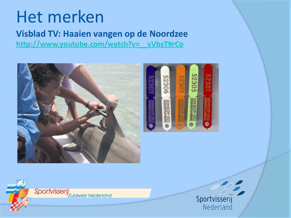 Het merken Visblad TV: Haaien vangen op de Noordzee http://www.youtube.com/watch?v=__vVbsT9rCo http://www.youtube.com/watch?v=__vVbsT9rCo