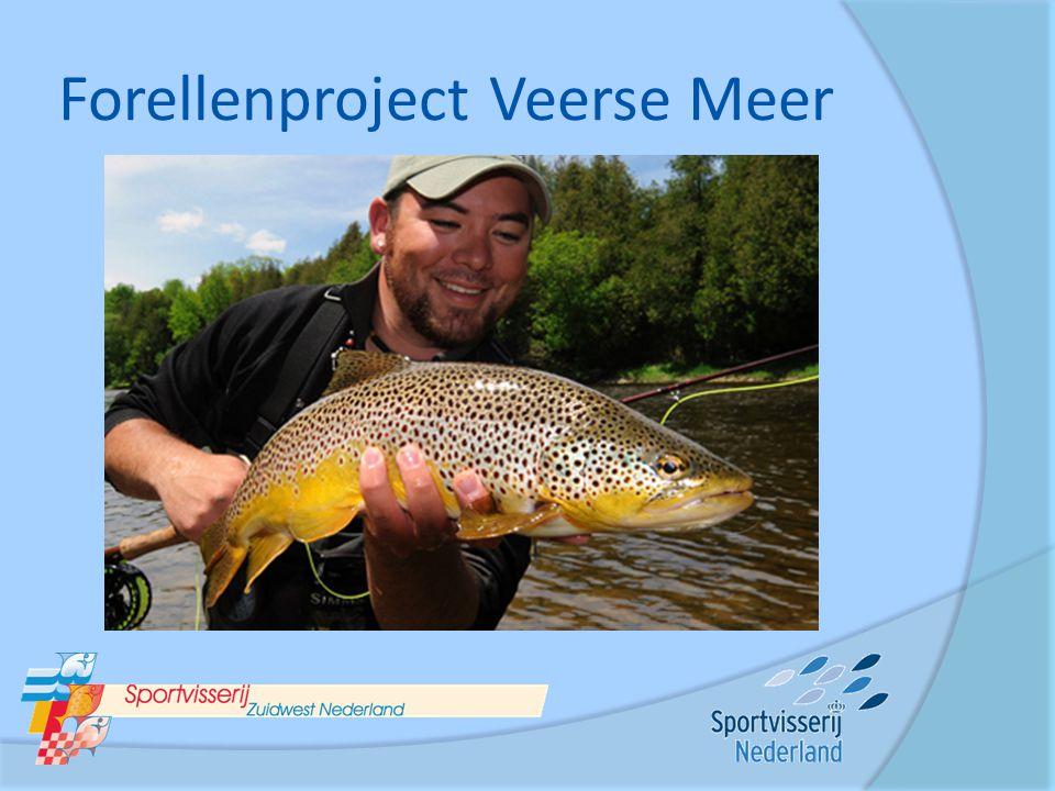 Forellenproject Veerse Meer