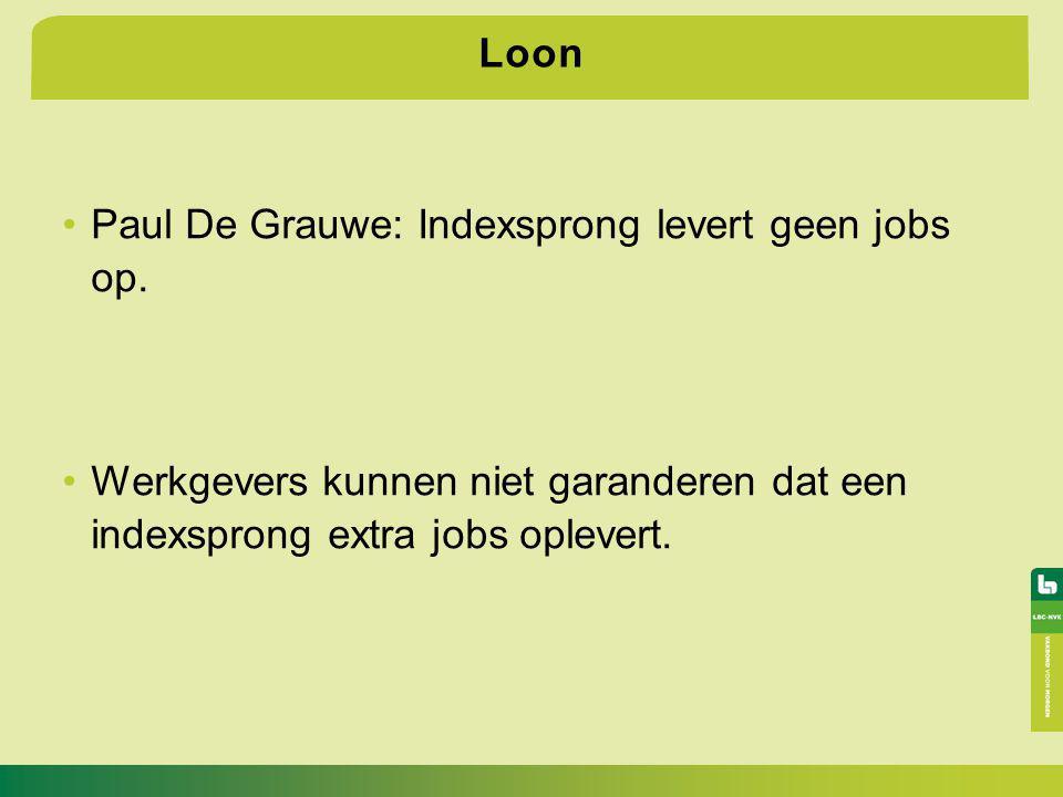 Loon Paul De Grauwe: Indexsprong levert geen jobs op.