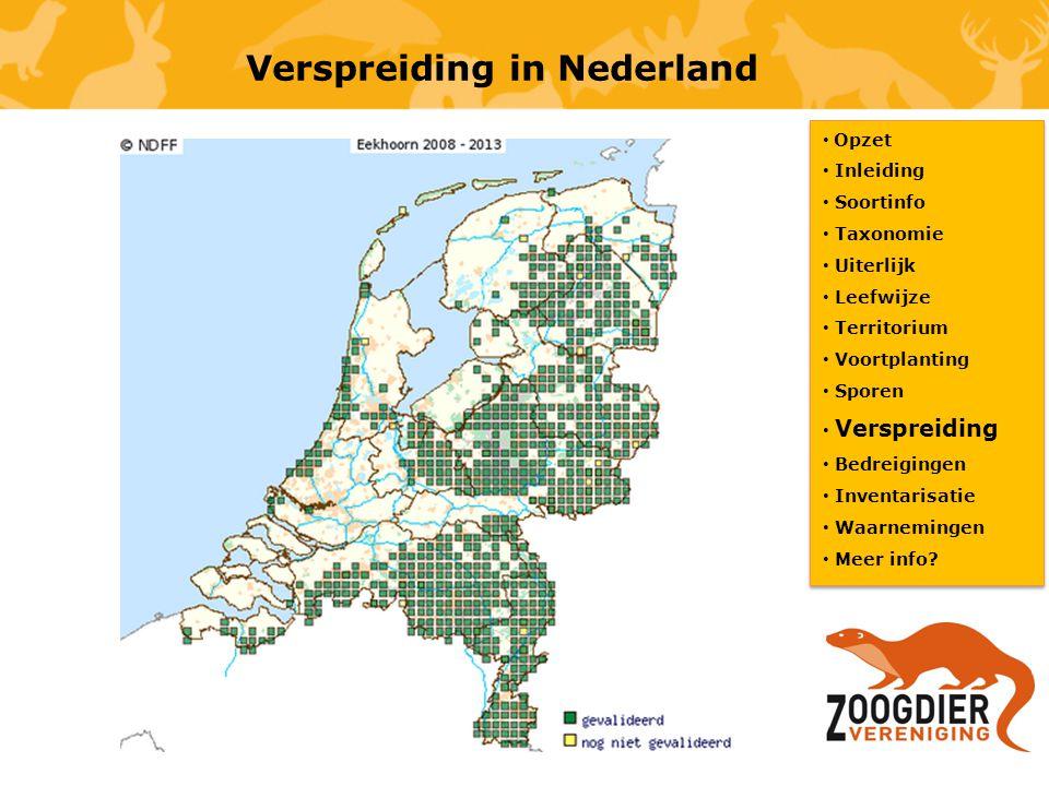 Verspreiding in Nederland Opzet Inleiding Soortinfo Taxonomie Uiterlijk Leefwijze Territorium Voortplanting Sporen Verspreiding Bedreigingen Inventari