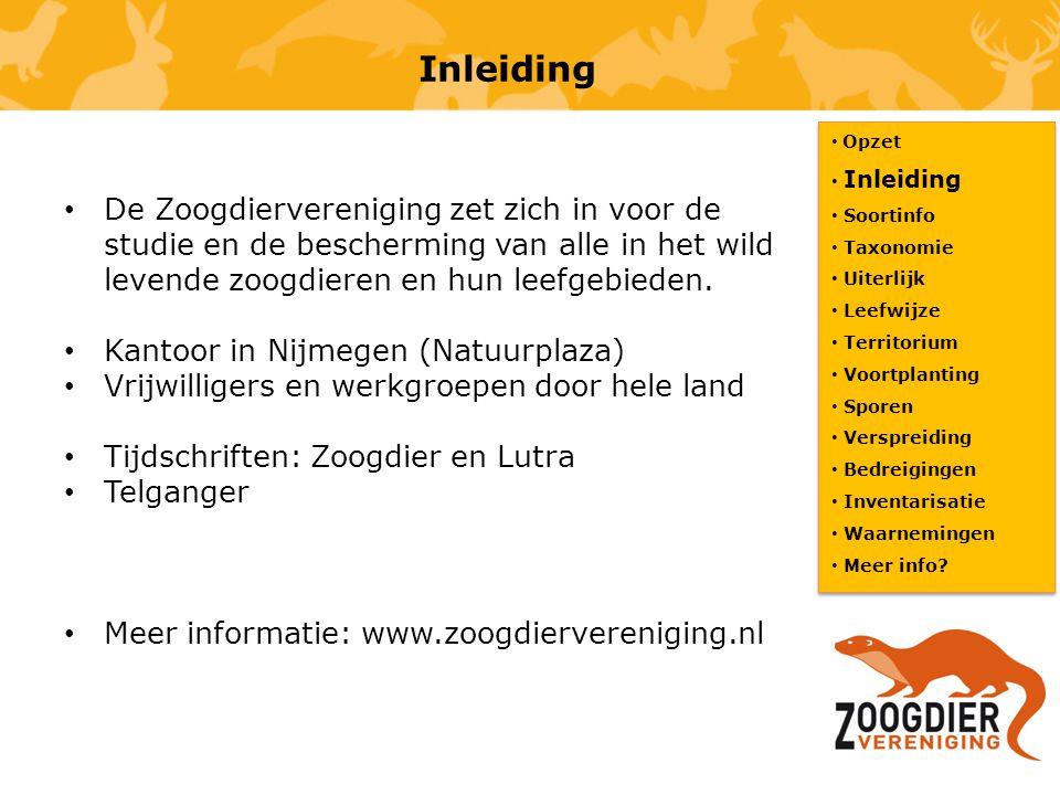 Inleiding De Zoogdiervereniging zet zich in voor de studie en de bescherming van alle in het wild levende zoogdieren en hun leefgebieden. Kantoor in N