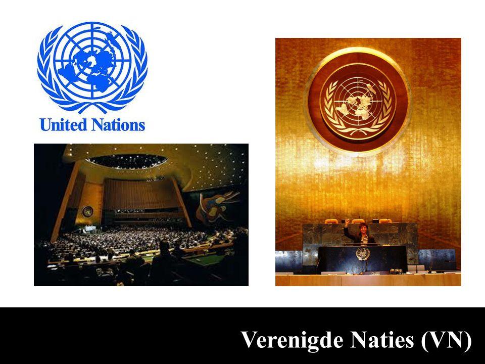 Verenigde Naties (VN)