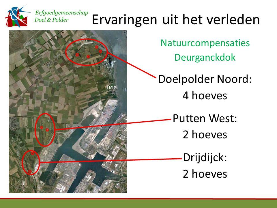 Ervaringen uit het verleden Dambordpatroon Doel Uniek polderlandschap