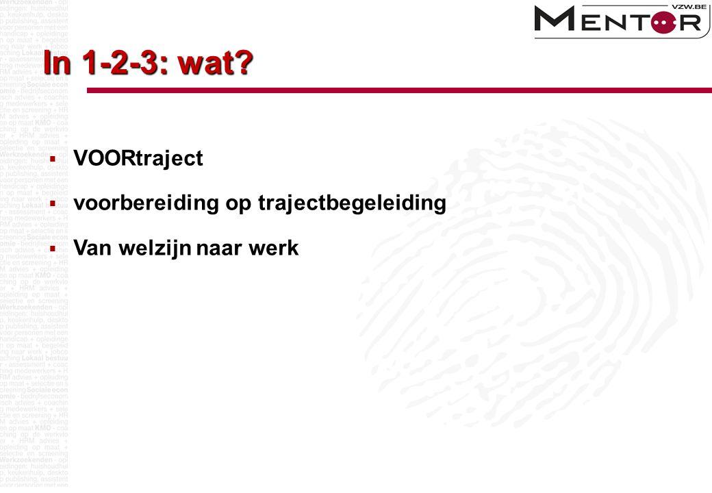 In 1-2-3: wat?  VOORtraject  voorbereiding op trajectbegeleiding  Van welzijn naar werk