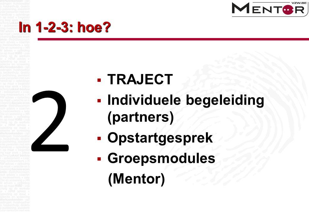 In 1-2-3: hoe?  TRAJECT  Individuele begeleiding (partners)  Opstartgesprek  Groepsmodules (Mentor) 2