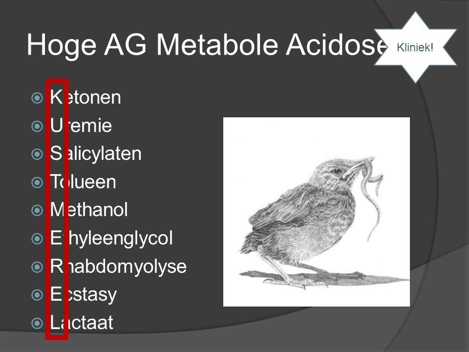 Hoge AG Metabole Acidose  Ketonen  Uremie  Salicylaten  Tolueen  Methanol  Ethyleenglycol  Rhabdomyolyse  Ecstasy  Lactaat Kliniek!