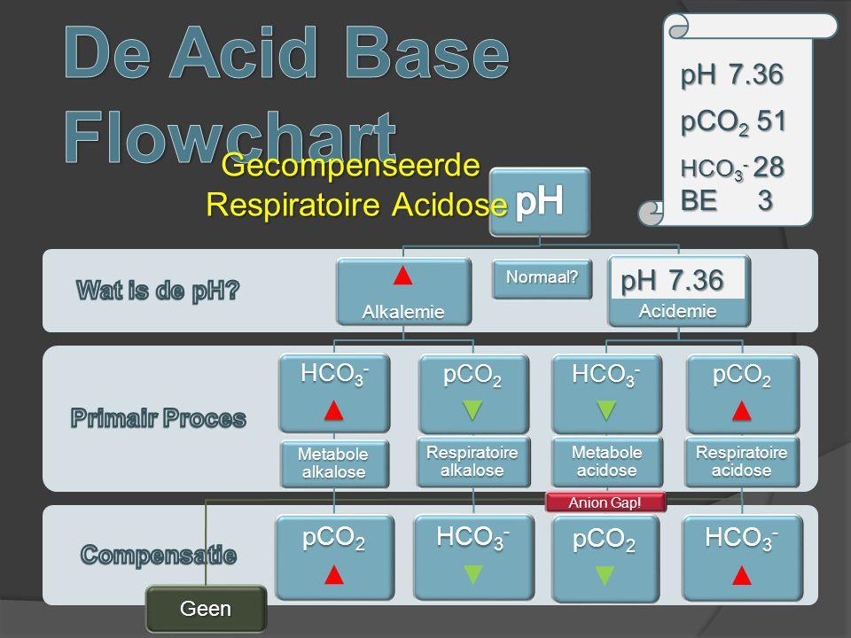 ▲Alkalemie HCO3 - ▲ Metabole alkalose pCO2 ▲ pCO2▼ Respiratoire alkalose HCO3 - ▼ Acidemie HCO3 - ▼ Metabole acidose pCO2 ▼ pCO2▲ Respiratoire acidose