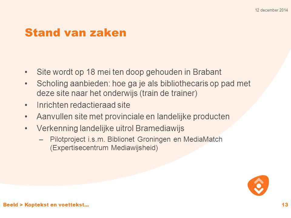 Stand van zaken Site wordt op 18 mei ten doop gehouden in Brabant Scholing aanbieden: hoe ga je als bibliothecaris op pad met deze site naar het onder