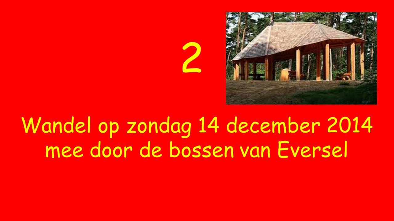 2 Wandel op zondag 14 december 2014 mee door de bossen van Eversel