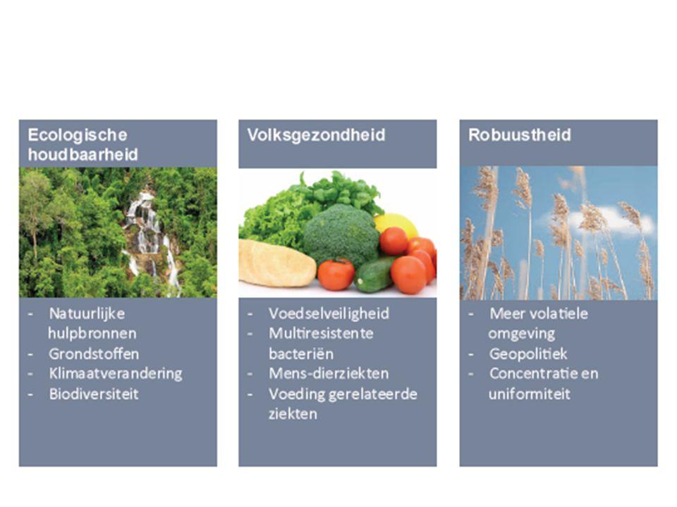 Twee hoofdaanbevelingen Van landbouwbeleid naar voedselbeleid Bevorder de veerkrachtig voedselnet