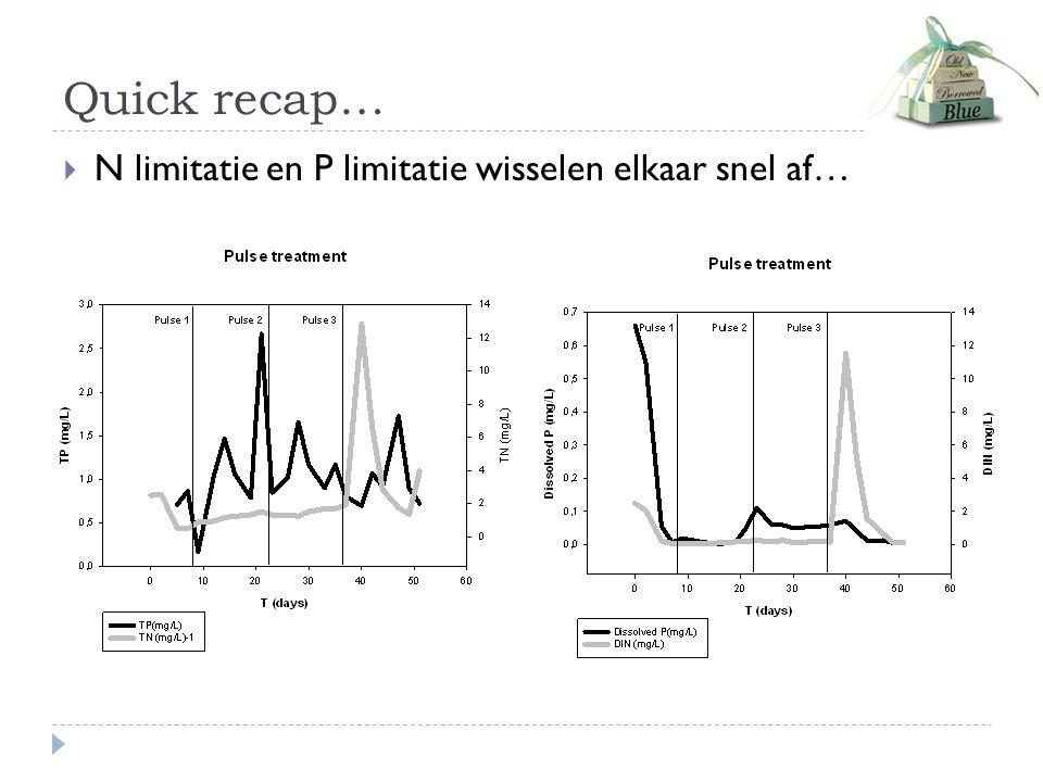 Quick recap…  N limitatie en P limitatie wisselen elkaar snel af…