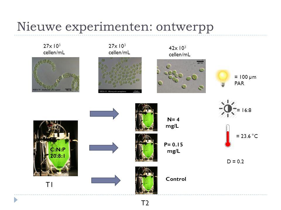 Nieuwe experimenten: ontwerpp C:N:P 20:8:1 27x 10 3 cellen/mL 42x 10 3 cellen/mL = 100 µm PAR = 16:8 = 23.6 °C D = 0.2 T2 T1 P= 0.15 mg/L N= 4 mg/L Control