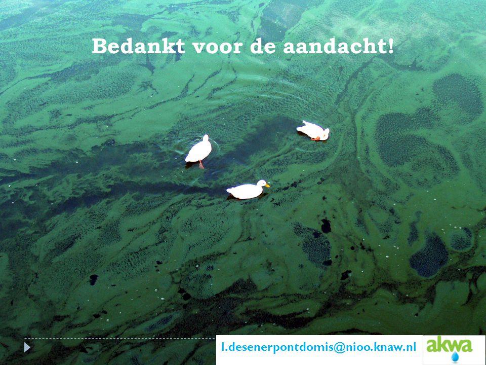 Bedankt voor de aandacht! l.desenerpontdomis@nioo.knaw.nl