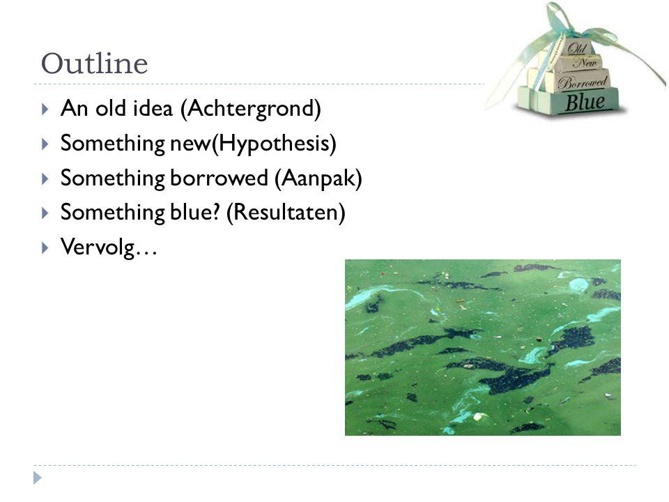 Begin van het project: An old idea….
