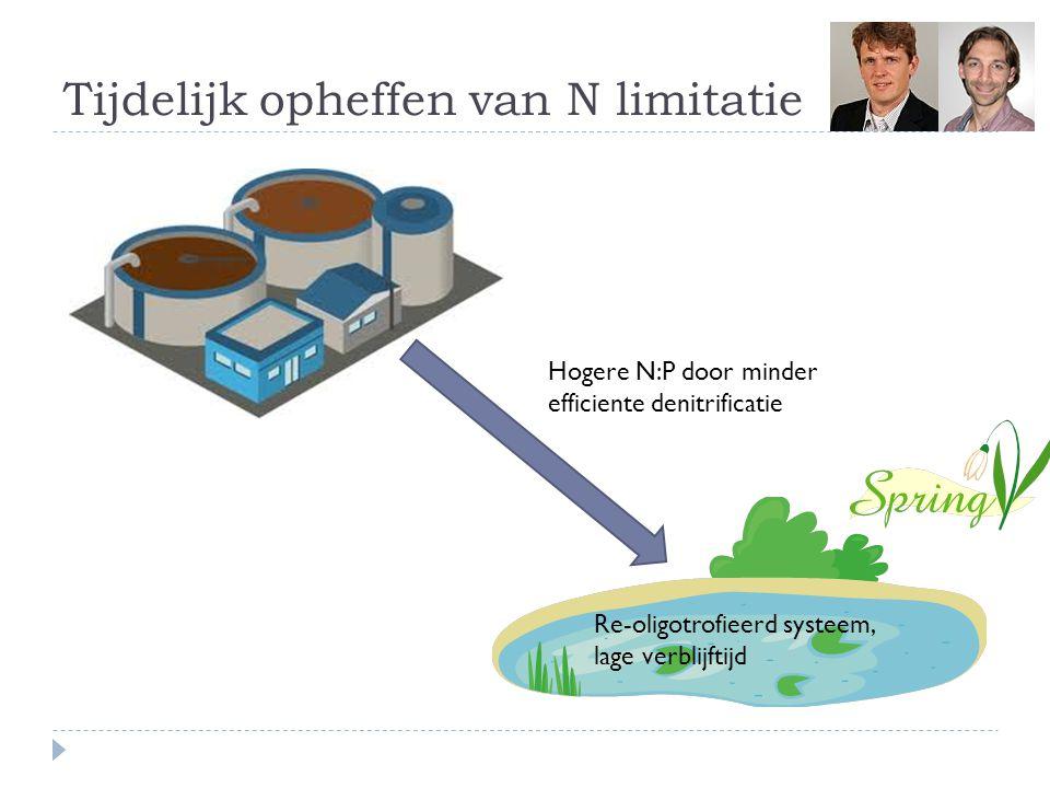 Tijdelijk opheffen van N limitatie Hogere N:P door minder efficiente denitrificatie Re-oligotrofieerd systeem, lage verblijftijd