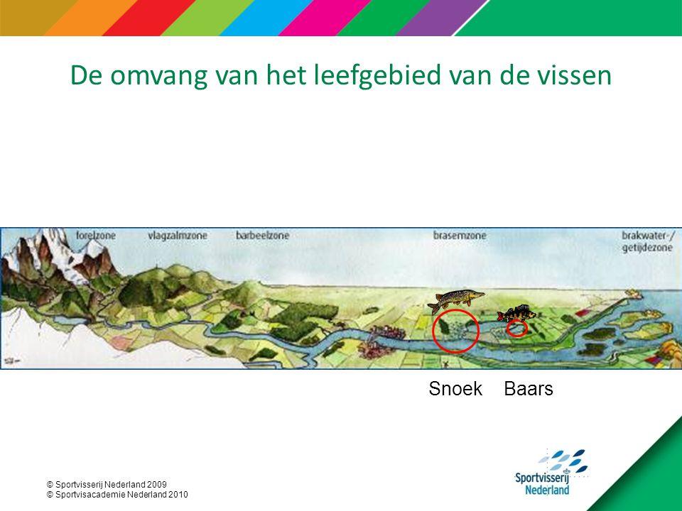 © Sportvisserij Nederland 2009 © Sportvisacademie Nederland 2010 BaarsSnoek De omvang van het leefgebied van de vissen