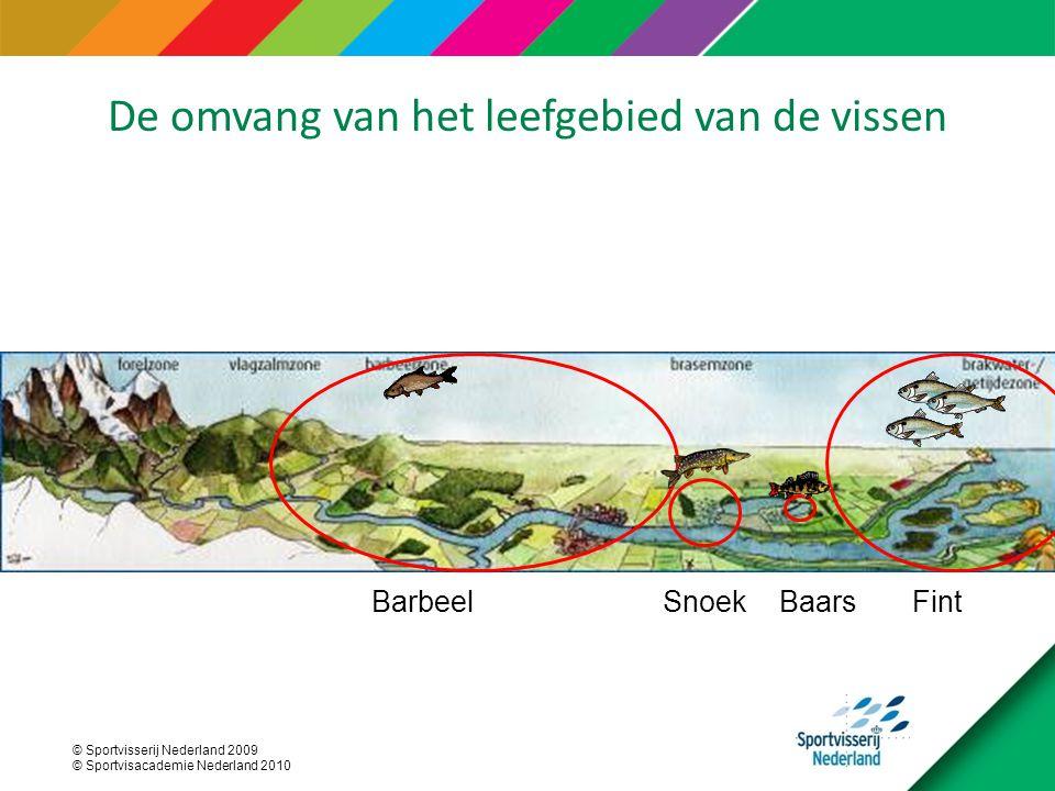 © Sportvisserij Nederland 2009 © Sportvisacademie Nederland 2010 FintBaarsSnoekBarbeel De omvang van het leefgebied van de vissen