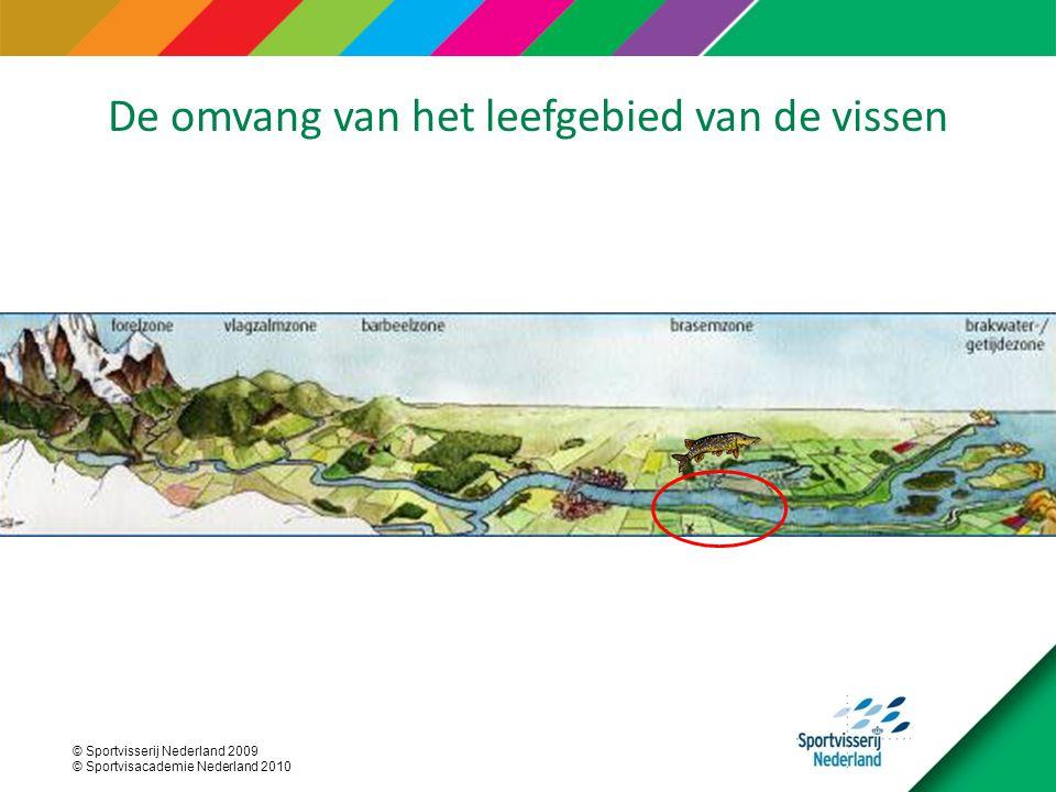 © Sportvisserij Nederland 2009 © Sportvisacademie Nederland 2010 De omvang van het leefgebied van de vissen