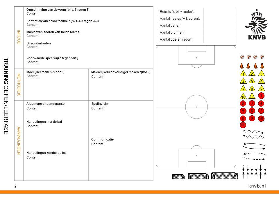 2 Ruimte (x bij y meter): Aantal hesjes (+ kleuren): Aantal ballen: Aantal pionnen: Aantal doelen (soort): INHOUD Omschrijving van de vorm (bijv. 7 te