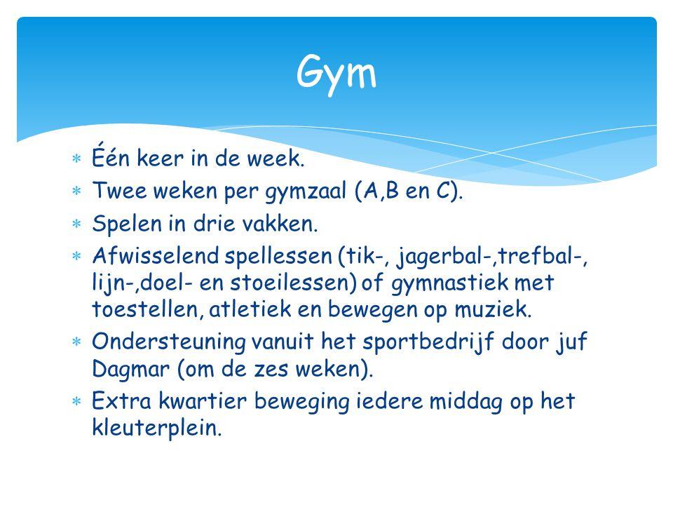  Één keer in de week.  Twee weken per gymzaal (A,B en C).  Spelen in drie vakken.  Afwisselend spellessen (tik-, jagerbal-,trefbal-, lijn-,doel- e