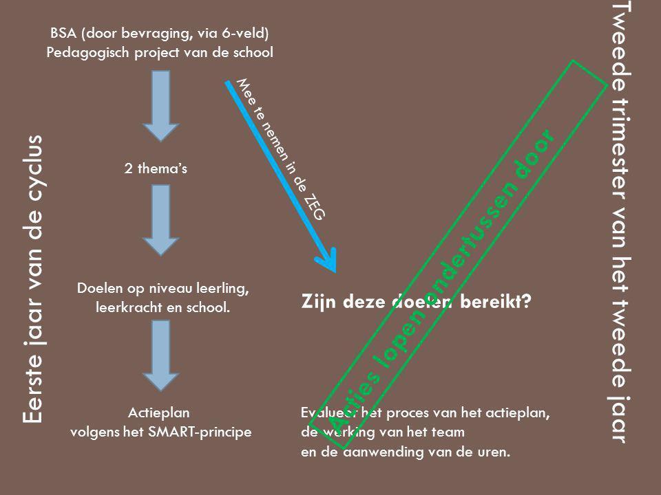 BSA (door bevraging, via 6-veld) Pedagogisch project van de school 2 thema's Doelen op niveau leerling, leerkracht en school. Actieplan volgens het SM