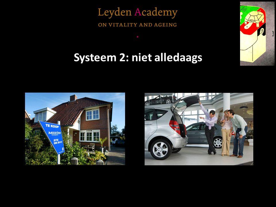 Systeem 2: niet alledaags