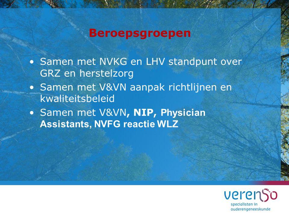 Beroepsgroepen Samen met NVKG en LHV standpunt over GRZ en herstelzorg Samen met V&VN aanpak richtlijnen en kwaliteitsbeleid Samen met V&VN, NIP, Phys