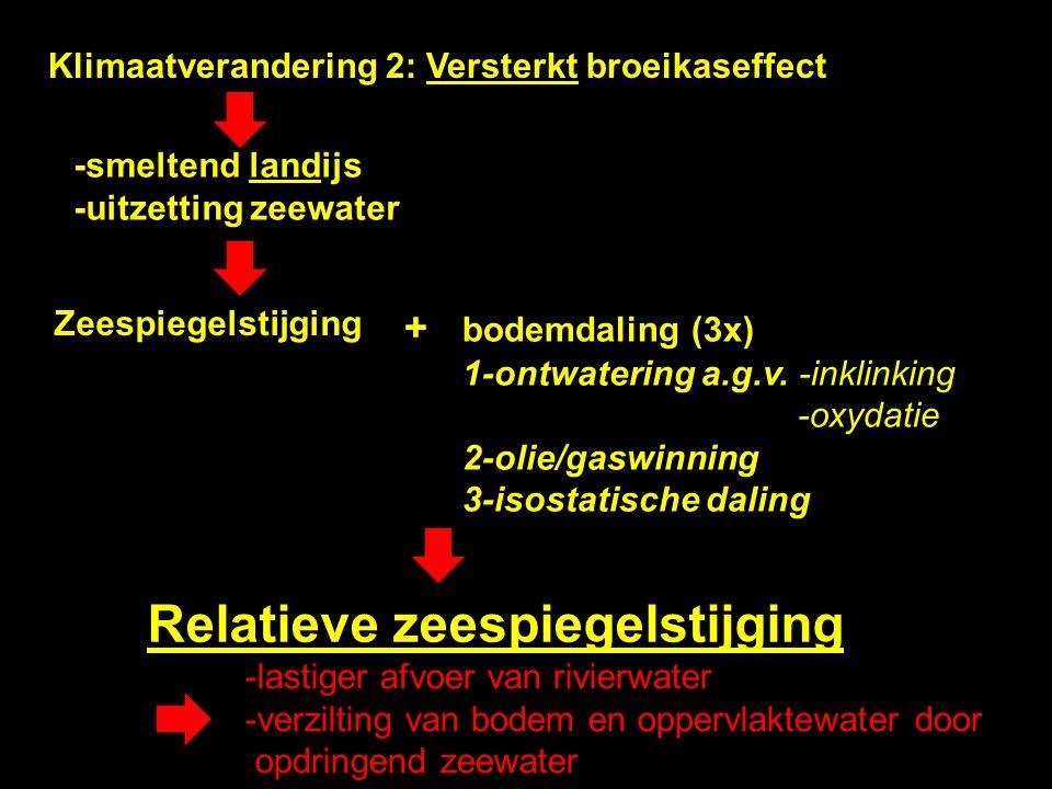 Klimaatverandering 2: Versterkt broeikaseffect -smeltend landijs -uitzetting zeewater Zeespiegelstijging + bodemdaling (3x) 1-ontwatering a.g.v. -inkl