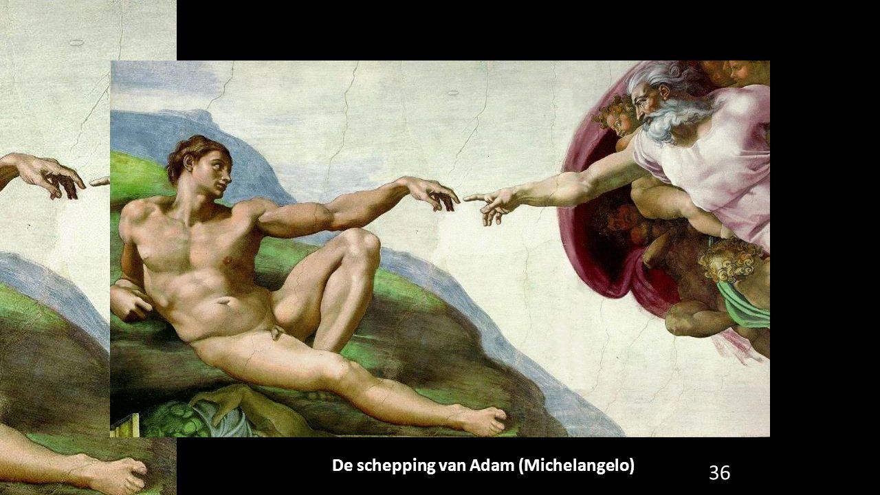 De schepping van Adam (Michelangelo) 36