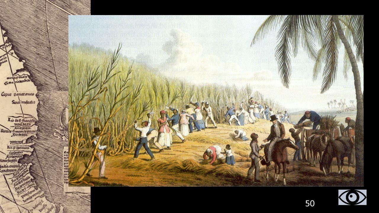 Amerika werd door de Europese kolonisators flink uitgebuit: Zuid-Amerika: zilvermijnen (Spanje) Noord-Amerika: veeteelt, jacht op dieren (bonthuiden)