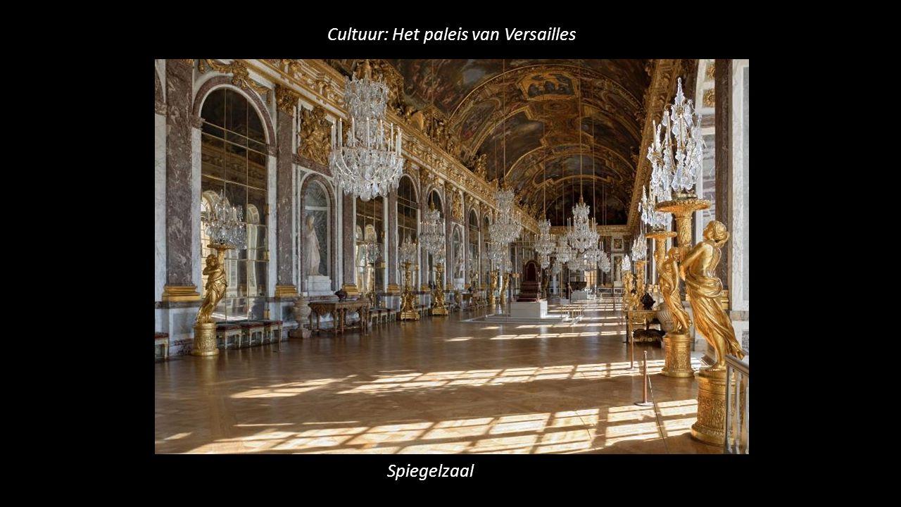 Cultuur: Het paleis van Versailles Spiegelzaal