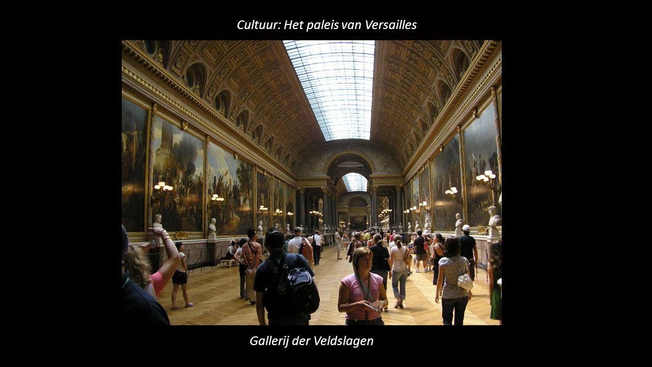 Cultuur: Het paleis van Versailles Gallerij der Veldslagen