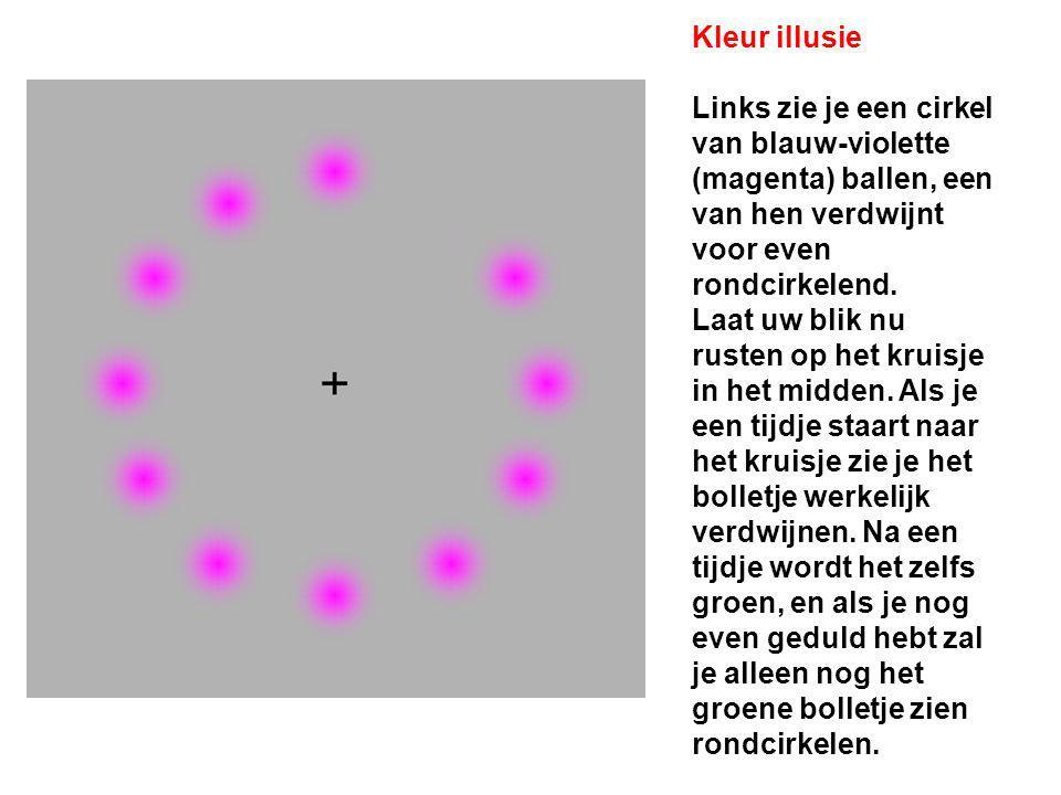 Kleur illusie Links zie je een cirkel van blauw-violette (magenta) ballen, een van hen verdwijnt voor even rondcirkelend.