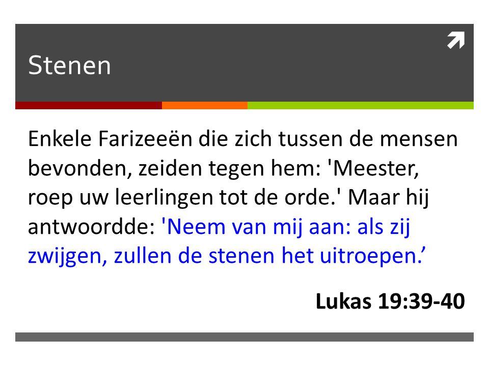  Stenen Enkele Farizeeën die zich tussen de mensen bevonden, zeiden tegen hem: 'Meester, roep uw leerlingen tot de orde.' Maar hij antwoordde: 'Neem