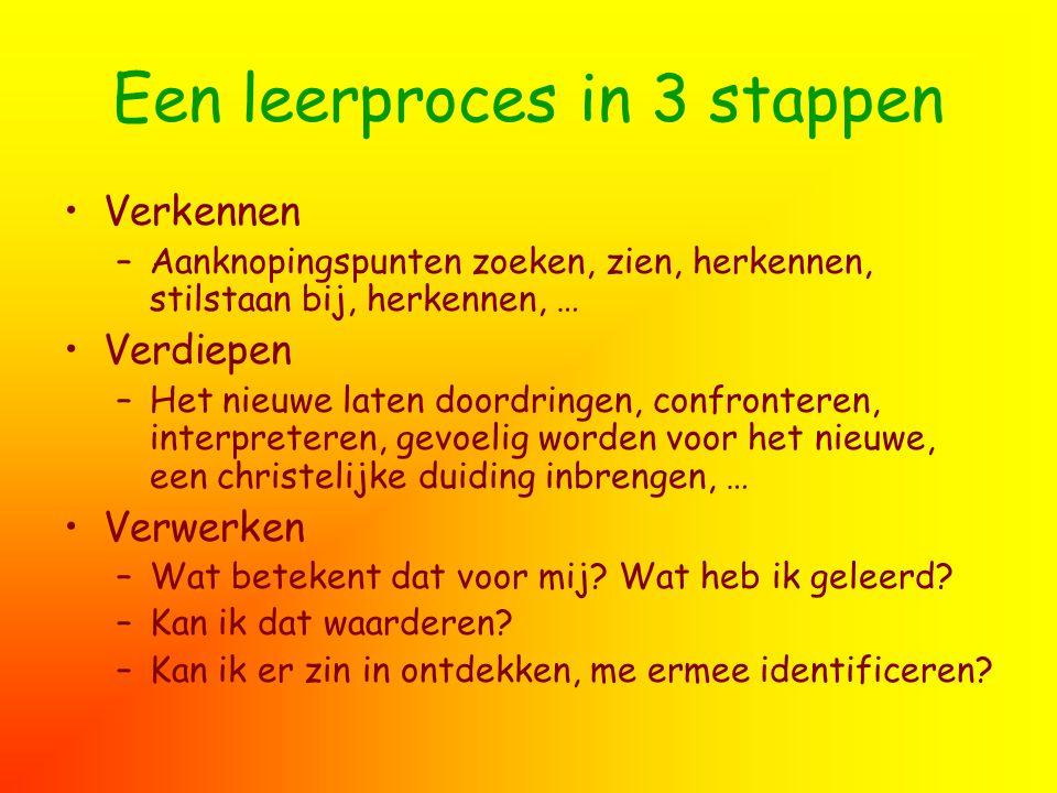 Een leerproces in 3 stappen Verkennen –Aanknopingspunten zoeken, zien, herkennen, stilstaan bij, herkennen, … Verdiepen –Het nieuwe laten doordringen,