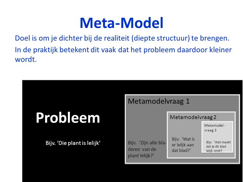 Meta-Model Doel is om je dichter bij de realiteit (diepte structuur) te brengen. In de praktijk betekent dit vaak dat het probleem daardoor kleiner wo