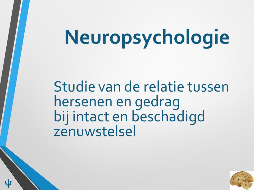 Neuropsychologisch onderzoek aangevraagd door: Huisarts Neuroloog Psychiater / Geriater Revalidatiearts Jeugdarts ψ