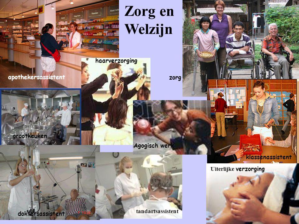Zorg en Welzijn apothekersassistent haarverzorging zorg Agogisch werk klassenassistent Uiterlijke verzorging tandartsassistent doktersassistent grootk