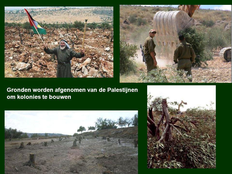 Gronden worden afgenomen van de Palestijnen om kolonies te bouwen