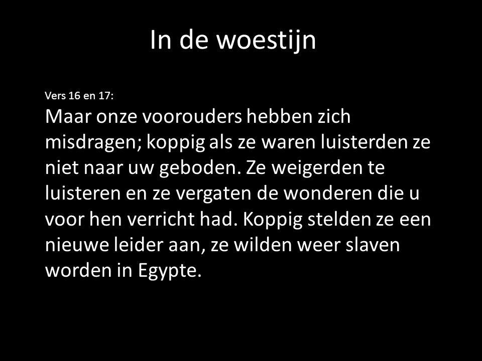 Vers 16 en 17: Maar onze voorouders hebben zich misdragen; koppig als ze waren luisterden ze niet naar uw geboden.