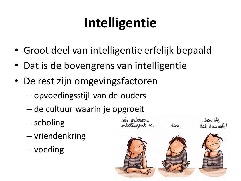 Ik: samenspel bij het leren Controle functies Intelligentie Motivatie Omgeving Karakter/persoonlijkheid Goed in je vel zitten Groeimindset Succesfactoren